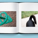 Photo Book: dog tail