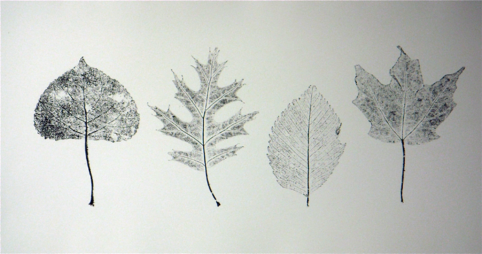 Printmaking DSCN5569