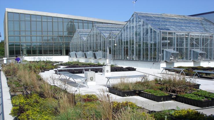 the greenhouse and greenroof  u2013 biology