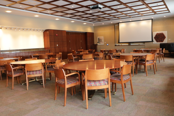 Valhalla Room with built-in projector and screen.
