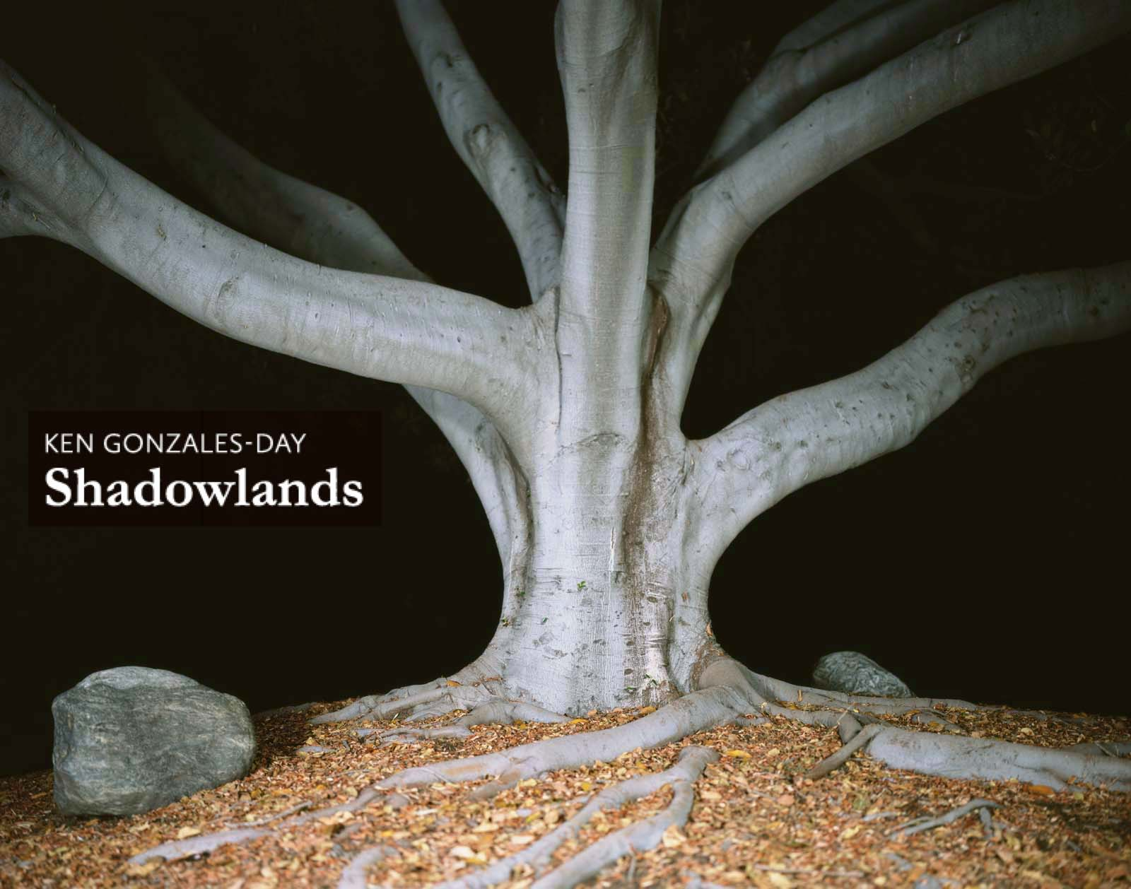 Shadowlands, Ken Gonzales-Day