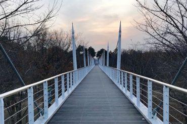 Bridge to Han River