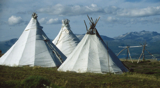sami tents This interdisciplinary course explores the Sámi an indigenous people living mainly in the northern parts of Norway Sweden Finland and Russia. & Norwegian 244: The Sámi: Traditions in Transition u2013 Norwegian