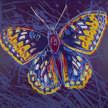 "The ""San Francisco Silverspot"" print is one of four prints from Andy Warhol's Endangered Species series that are now part of the Flaten Art Museum's collection."